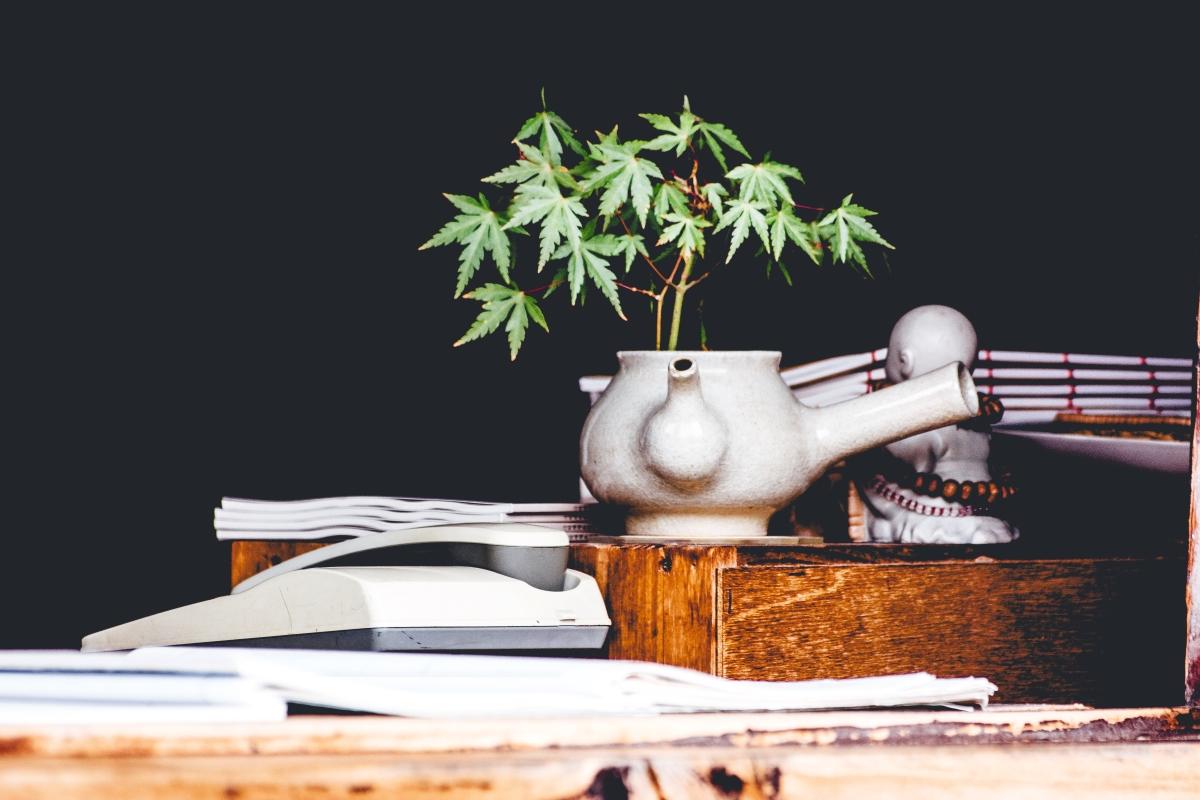 Cannabis-Saves-Lives-Let's-Enjoy-Cannabis